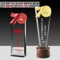 70周年徽标水晶奖杯 党建周年单位颁奖奖杯 哪里有卖奖杯