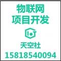 商业物联网项目开发价格