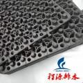 排水板出售贵阳绿化蓄排水板(20厚)生产商0