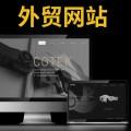 中山专业外贸网站定制费用