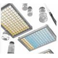 国内干扰素elisa检测试剂盒低成本打造强势品牌公司,选择黄