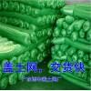 惠州盖土网,工地盖土网,绿色防尘网,大厂