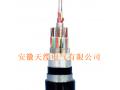 长途对称信号电缆(皖特缆) (8)