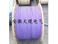 西门子DP总线电缆,安徽天缆电气有限公司 (10)
